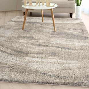 Shellenbarger Modern Plush Ivory Area Rug