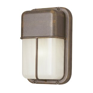 Hinson 1-Light Outdoor Flush Mount