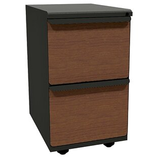 Zapf 2-Drawer Mobile Pedestal File Cabinet