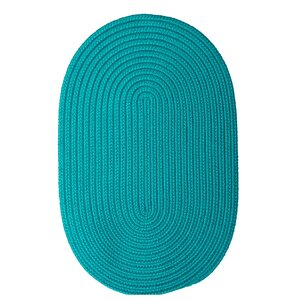 Mcintyre Turquoise Outdoor Area Rug