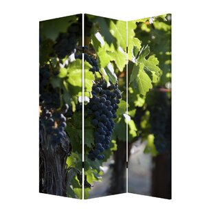 Screen Gems Wine Country 3 Panel Room Divider