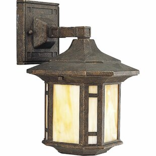 Guide to buy Triplehorn 1-Light Outdoor Honey Wall Lantern By Alcott Hill