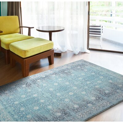 Distressed Turquoise Area Rug Size