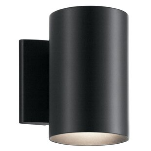 Brayden Studio Deerfin Outdoor Sconce