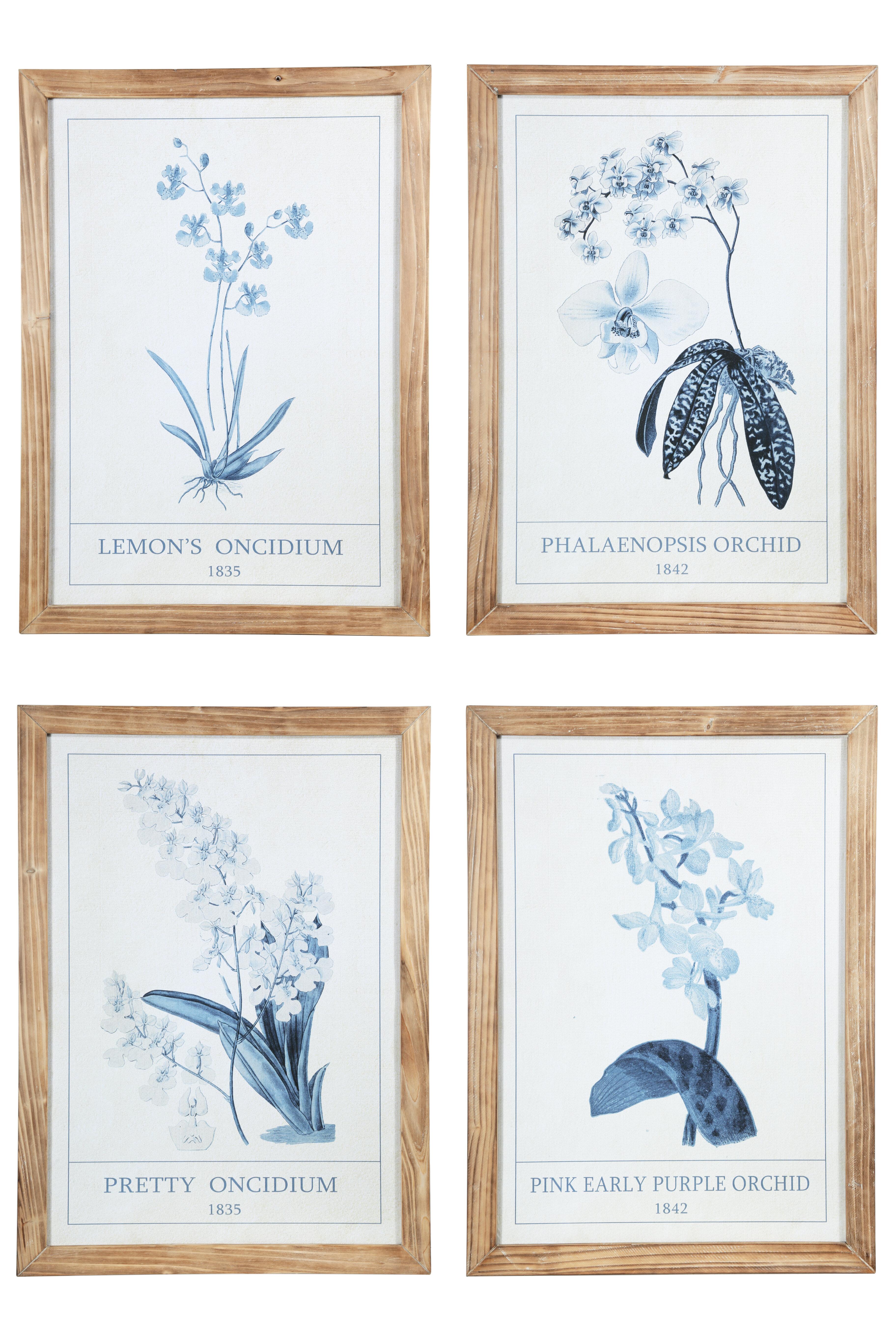 4 Piece Orchids Framed Art You Ll Love In 2021 Wayfair