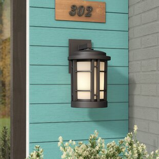 Brayden Studio Cardin 1-Light Outdoor Wall Lantern