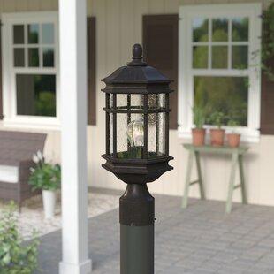 Derosier Outdoor 1-Light Lantern Head by Three Posts