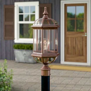 Shopping for Grenville Outdoor 1-Light Lantern Head By Darby Home Co