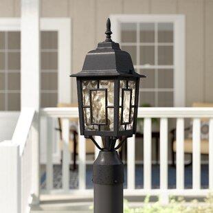 Online Reviews Steinhoff Outdoor 1-Light Lantern Head By Charlton Home