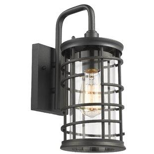Williston Forge Sue Industrial Textured Outdoor Wall Lantern