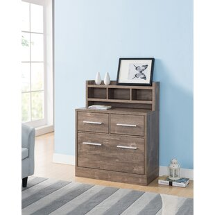 Dedman 2 Drawer Filing Cabinet By Mercury Row
