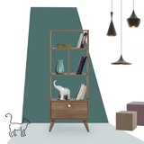 Topanga 51.57 x 20.47 Etagere Bookcase by George Oliver