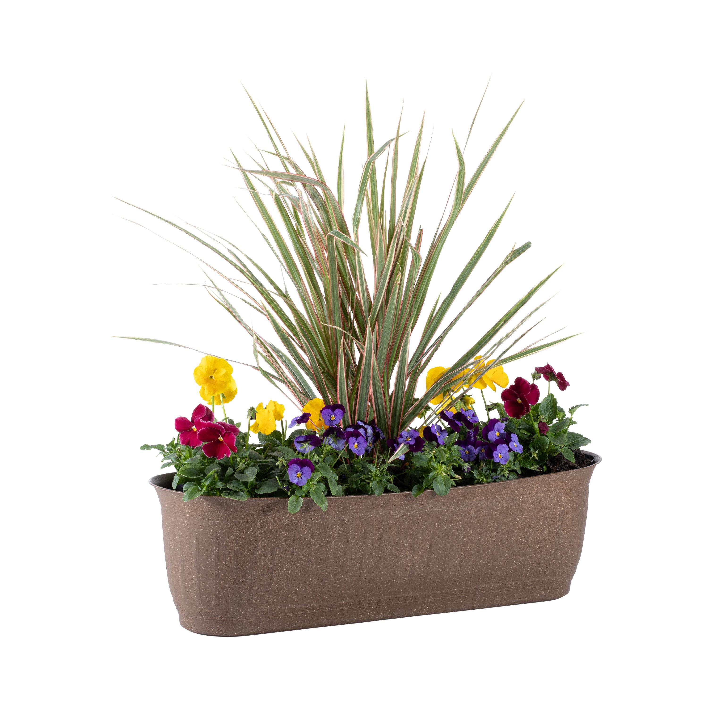 Traditional Window Box Indoor Planters You Ll Love In 2021 Wayfair