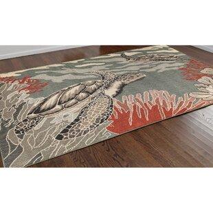 Looking for Ricki Seaturtles Ocean Gray Indoor/Outdoor Area Rug Reviews