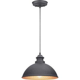 Shanklin 1-Light Outdoor H..