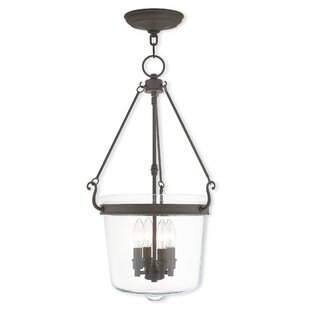 Darby Home Co Walbridge 4-Light Urn Pendant
