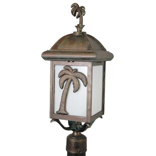 Alcott Hill Penfield Palm Tree Series 1-Light Lantern Head