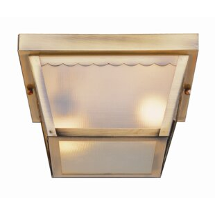 Great choice Holter 2-Light Outdoor Flush Mount By Ebern Designs