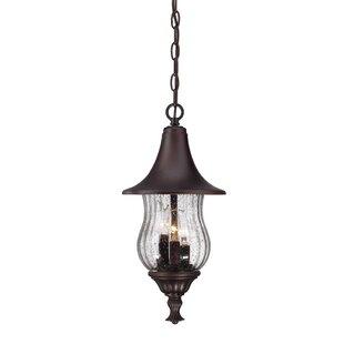 Fleur De Lis Living Berriman 3-Light Outdoor Hanging Lantern