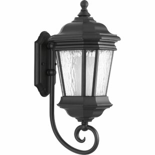 Alcott Hill Triplehorn 1-Light Outdoor Wall Lantern