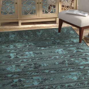 Turquoise And Black Area Rug Wayfair