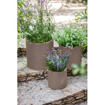 Williston Forge Niko Fiber Clay Pot Planter Reviews Wayfair
