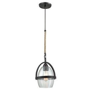Breakwater Bay Robledo 1-Light Lantern Pendant