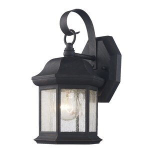 Seldon Outdoor Wall Lantern (Set of 2)