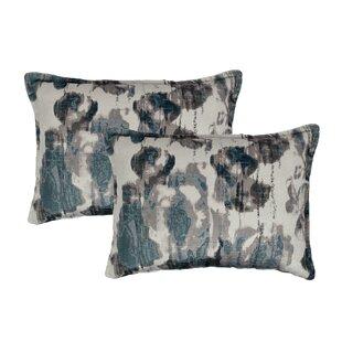 Argasio Velvet Lumbar Pillow (Set of 2)