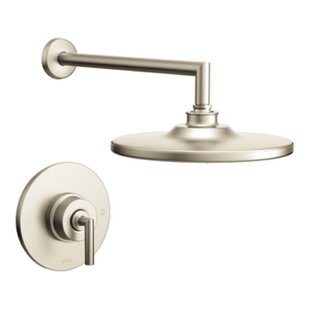 Affordable Arris Pressure Balance Shower Faucet Trim with Lever Handle ByMoen