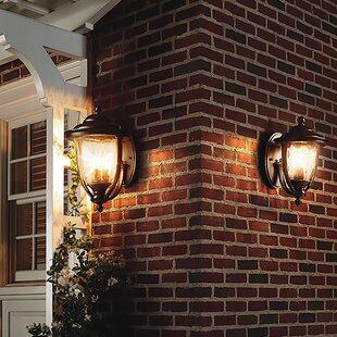 Triplehorn 1-Light Bronze ..