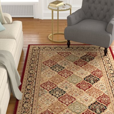 6 Foot Octagon Rugs Wayfair