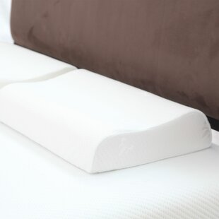 Remedy Davis Large Contour Memory Foam Standard Pillow