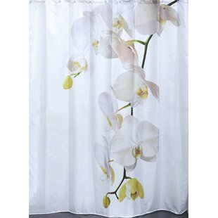 Shop For Purity Orchid Polyester Printed Shower Curtain By Evideco