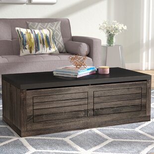 Brayden Studio Raul Coffee Table with Storage