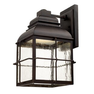 Affordable Annex 1-Light Outdoor Wall Lantern By Loon Peak