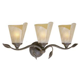 Fleur De Lis Living Brott 3-Light Vanity Light
