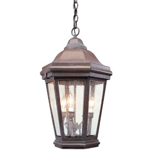 Order Theodore Large 3-Light Outdoor Hanging Lantern By Darby Home Co