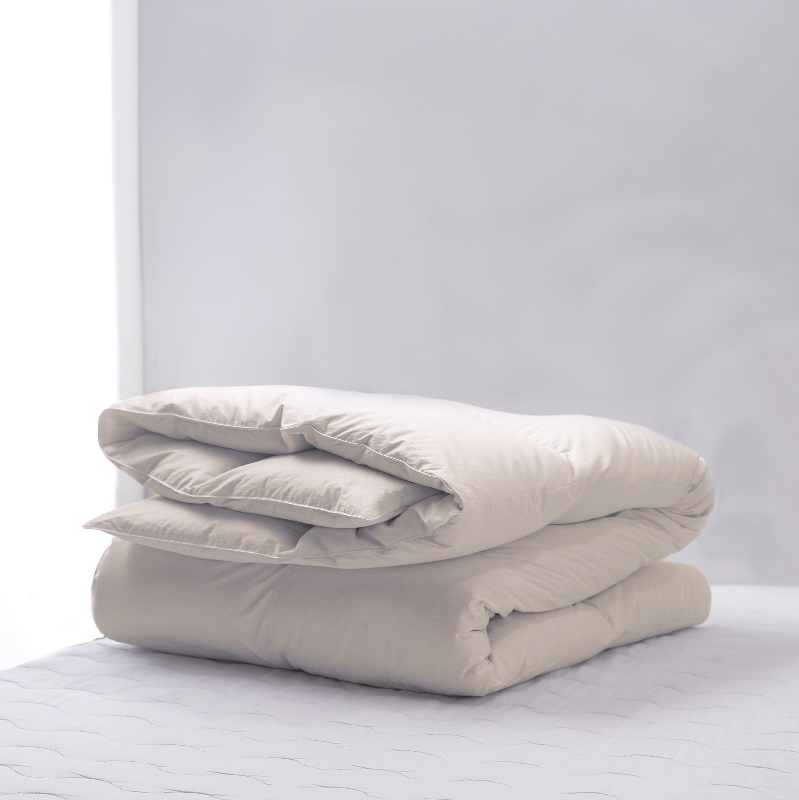 Alwyn Home All Season Polyester Down Alternative Comforter Wayfair