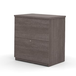 Alves 2-Drawer Lateral filing cabinet