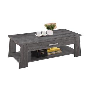 Drusilla Bottom Shelf Wood Coffee Table with Storage by Gracie Oaks