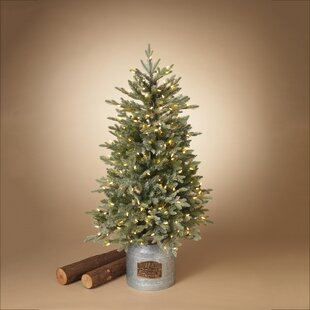 3 Foot Prelit Christmas Trees.3 Foot 4 Foot Pre Lit Christmas Trees You Ll Love In 2019