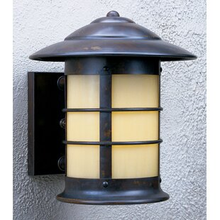 Newport 1-Light Outdoor Wall Lantern