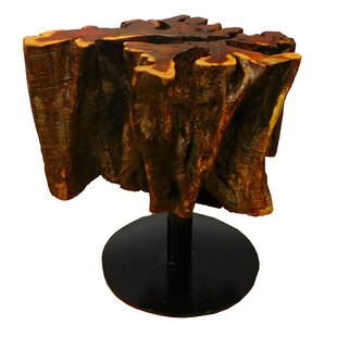 Penrod Tree Root End Table
