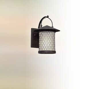 Searching for Sylvester 1-Light LED Outdoor Wall Lantern By Darby Home Co