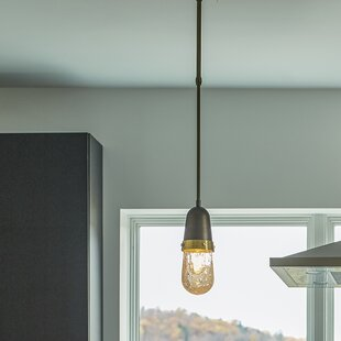 Hubbardton Forge Fizz 1-Light Novelty Pendant