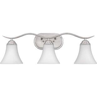 Newfane 3-Light Vanity Light By Charlton Home