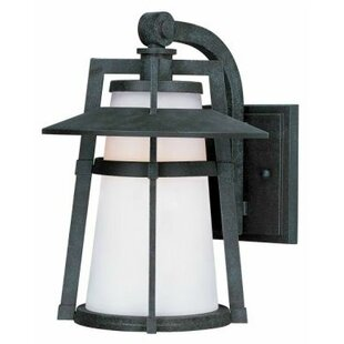 Trent Austin Design Harrower 1-Light Outdoor Wall Lantern