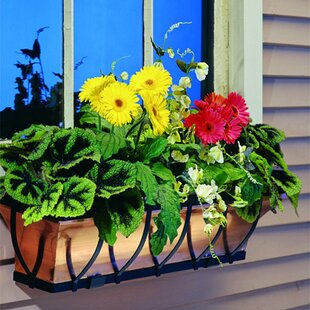 Wrought Iron Window Box Planter