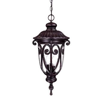 Alcott Hill Petrey 1 Light Outdoor Hanging Lantern Wayfair